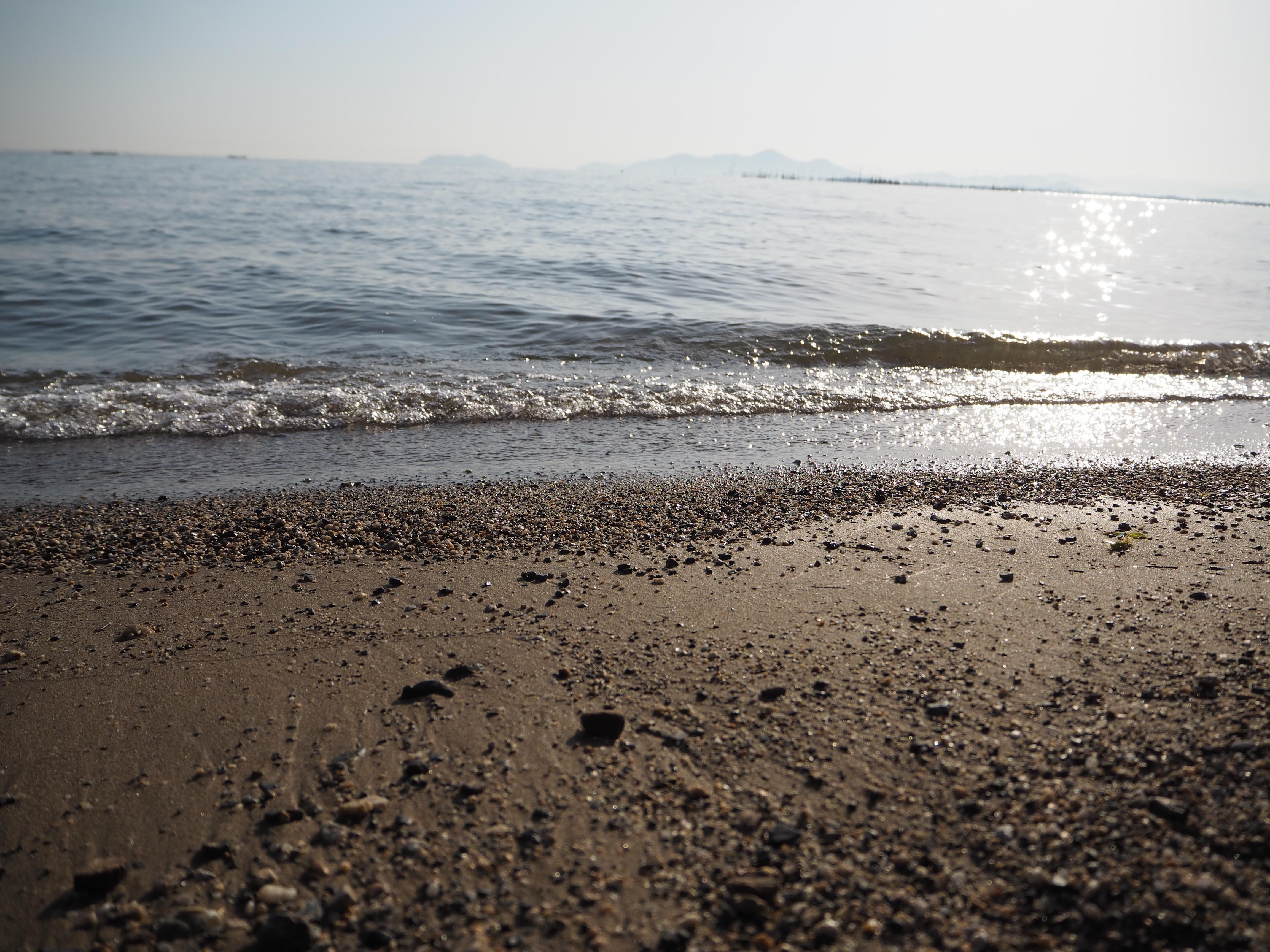 砂浜もあるのに
